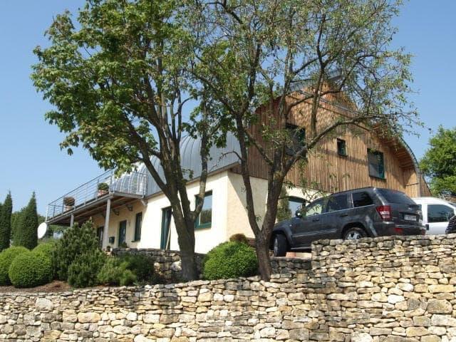 Stahl-Holzhaus, Einfamilienhaus - 10013